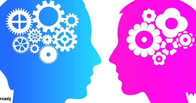 L'importance de comprendre les différences entre Homme et femme