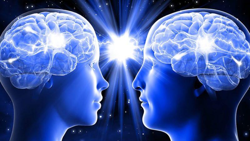 Le cerveau conditionne notre comportement